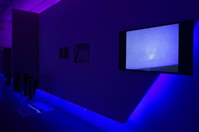 Installation view: Ludlow38, Goethe Institut, New York City (2019). Photo: Jason Loebs. Courtesy Cruising Pavilion.