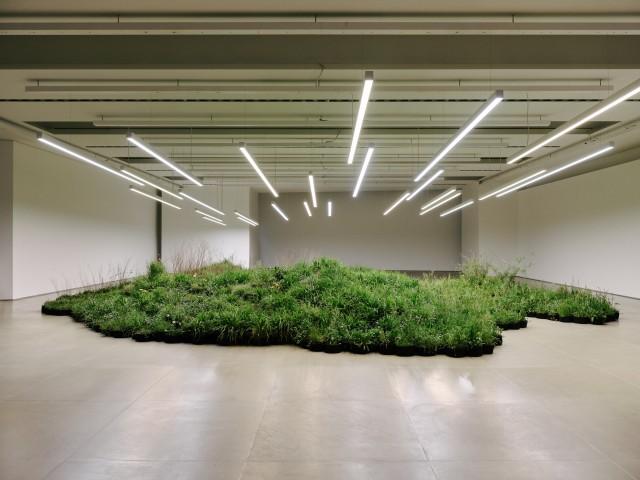 Adjacent Field, Milan (2019) av Linda Tegg. Bilden visar en tidigare installation med Linda Tegg.