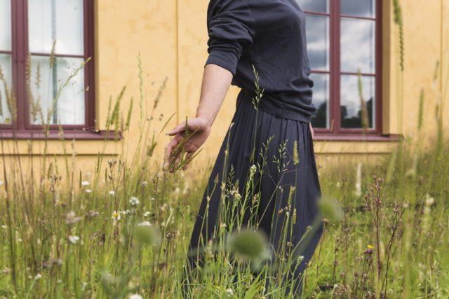 Infield Juni 2020. Foto: Elsa Soläng.