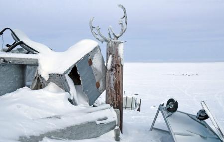 The Sámi competence of improvisation